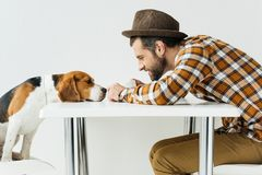 Side view of man touching dog nose. At table stock photo