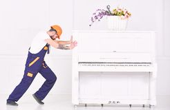 Side view man trying to relocate heavy piano isolated on white background. Strong man building muscles at work. Side view bearded man trying to relocate heavy stock images