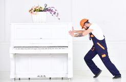 Side view man trying to relocate heavy piano  on white background. Strong man building muscles at work. Side view bearded man trying to relocate heavy piano  on Royalty Free Stock Images