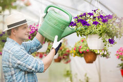 Side view of middle-aged man watering flower plants in greenhouse Stock Photos