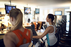 Side view of middle-aged woman. Side view of middle-aged women using anaerobic exercise machine in gym Stock Photos