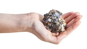 Side view of mineral ore on female palm Royalty Free Stock Photos
