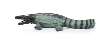 Side view Mosasaurus toy with shadow on white. Background stock images