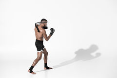 Side view of muay thai fighter training isolated on white royalty free stock photos