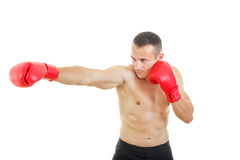 Side view of muscular male boxer hitting straight against a whit Royalty Free Stock Photography