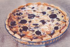 Side view of a mushroom tart with beef meat and cheese Royalty Free Stock Photography