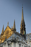 Side View of Notre Dame Cathedral at Sunset Royalty Free Stock Photos