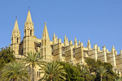 Side view of Palma Cathedral Royalty Free Stock Image