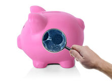 Side view piggy bank. An isolated pink piggy bank looking inside with magnifiying glass x-ray vision on white background Stock Photography