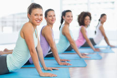 Side view portrait of a fit class doing the cobra pose Stock Images