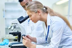 Female Scientist Using Microscope. Side view portrait of young female scientist looking in microscope while working on medical research in science laboratory stock photography