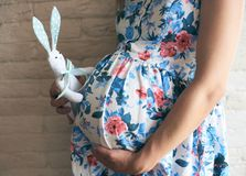Side view of pregnant mother keeping toy bunny near belly stock images