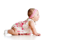 Side view of pretty baby girl crawling on floor. In studio royalty free stock images