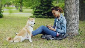 Side view of pretty mixed race girl using smartphone relaxing in park under tree while her cute shiba inu dog is sitting. Side view of pretty mixed race girl stock video footage