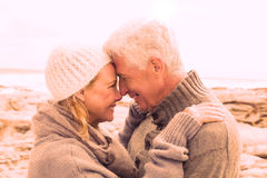 Side view of a romantic senior couple Royalty Free Stock Image