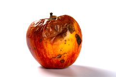 Free Side View Rotten Apple On White Background Stock Image - 151370981