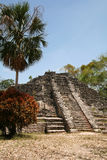 Side View of Ruin. Chacchoben Mayan Ruins in Mexico stock image