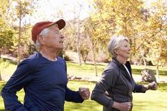 Side View Of Senior Couple Power Walking Through Park royalty free stock image