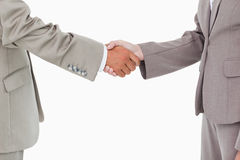 Side view of shaking hands Royalty Free Stock Images