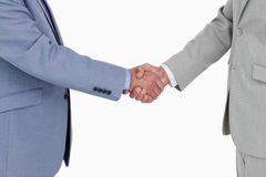 Side view of shaking hands Royalty Free Stock Photos