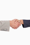 Side view of shaking hands of business people Royalty Free Stock Photos