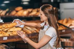 Side view of shop assistant arranging loafs of bread. In shopping market royalty free stock photos