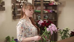 Woman working in a flower shop alone. Side view shot of a florist holding different flowers in a shop. She is checking them and putting together stock video footage