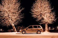 Side view of silver car with two trees Royalty Free Stock Photo