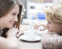 Side view of smiling young female friends looking at each other in cafe Stock Photos