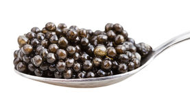 Side view of spoon with black sturgeon caviar Royalty Free Stock Photography