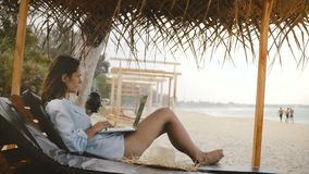 Side view successful happy freelancer workaholic woman with drink working on laptop in lounge chair on vacation beach. Concept of business and overwork stock video