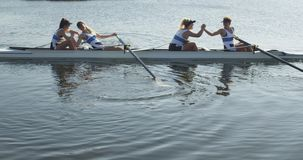 Female rowing team training on a river. Side view of a team of four young adult Caucasian women in a racing shell on a river hih fiving and shaking hands during stock video