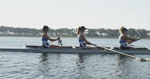 Female rowing team training on a river. Side view of a team of four young adult Caucasian women rowing in a racing shell on a river during training stock video