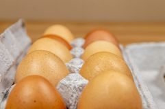 Side view of ten hen eggs in a carton box on a table with copy space. stock photo