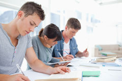 Side view of three students quietly working together Stock Photography