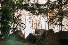 Side view of trial biker balancing on rocks outdoors. At pine forest stock image