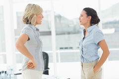 Side view of two businesswomen fighting Stock Photography