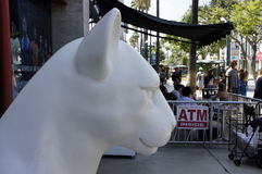 Side View Of A White Lion Head. The side view of the statue of a white Mountain Lion head on the 3rd street of the promenade in St. Monica, LA, CA Stock Photography