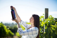 Side view of woman holding wine bottle at vineyard Stock Photography