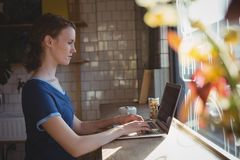 Side view of woman using laptop in cafe stock photo
