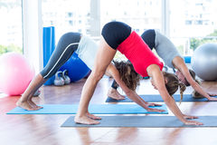 Side view of women doing downward pose Stock Images