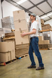 Side view of worker carrying boxes Stock Image
