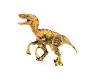 Side view yellow velociraptor toy on white background Stock Images