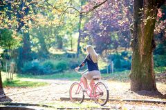 Blond long-haired attractive girl on pink lady bicycle in sunny autumn park on trees background. stock image