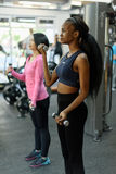 Side view of young black african-american and asian sexy women doing fitness exercise work with dumbbells together in Stock Images