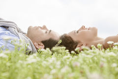Side view of young couple sleeping on grass against clear sky Stock Image