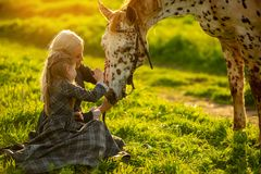 Side view of a young mother with a little girl in dresses stroke a spotted horse on a green meadow royalty free stock images