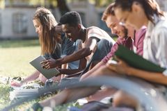 Multiethnic students studying together. Side view of young multiethnic students studying and reading books while sitting on grass Royalty Free Stock Photo