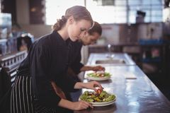 Side view of young wait staff preparing fresh salad plates while standing in commercial kitchen Royalty Free Stock Photo