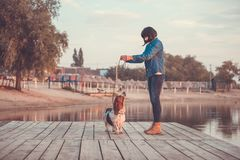 Side view of young woman holding hand up and playing with her dog Basset Hound by the river. Happy woman playing with dog by the river. Side view of young woman royalty free stock photography
